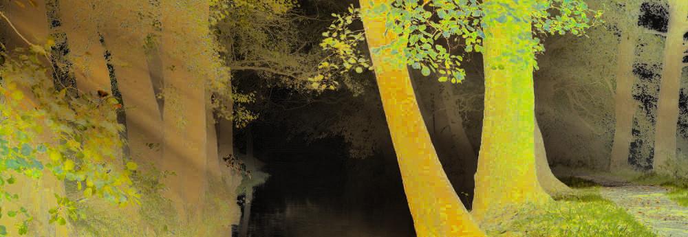 Obraz po operacji odwrócenia wartości kolorów zdjęcia