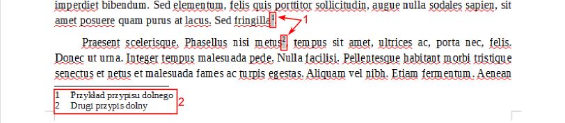 Przykład użycia przypisu dolnego w programie Writer pakietu LibreOffice