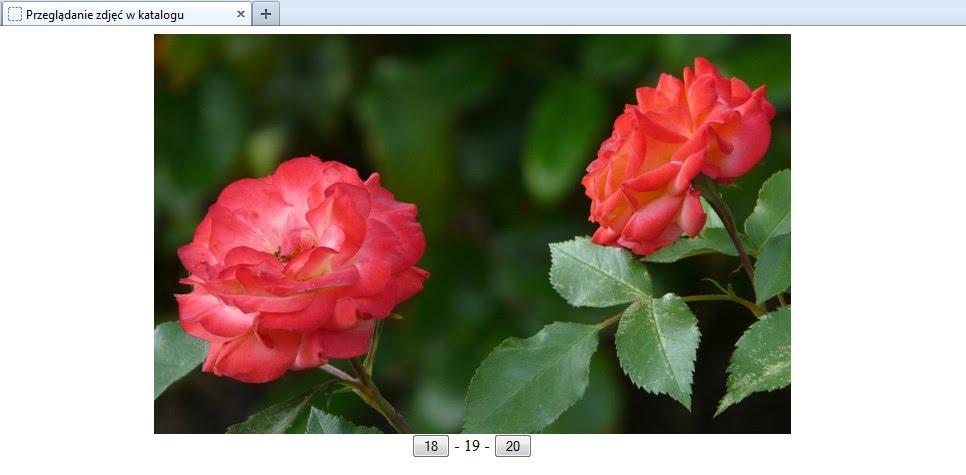 przeglądarka plików graficznych napisana w php